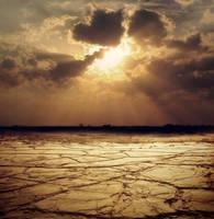 Desert Sunset by Dasha444