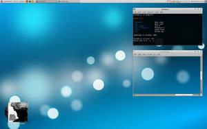 My Desktop - 081231 by hundone