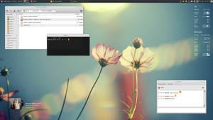 My Desktop - December 2010