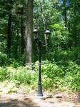 lamp stock 1