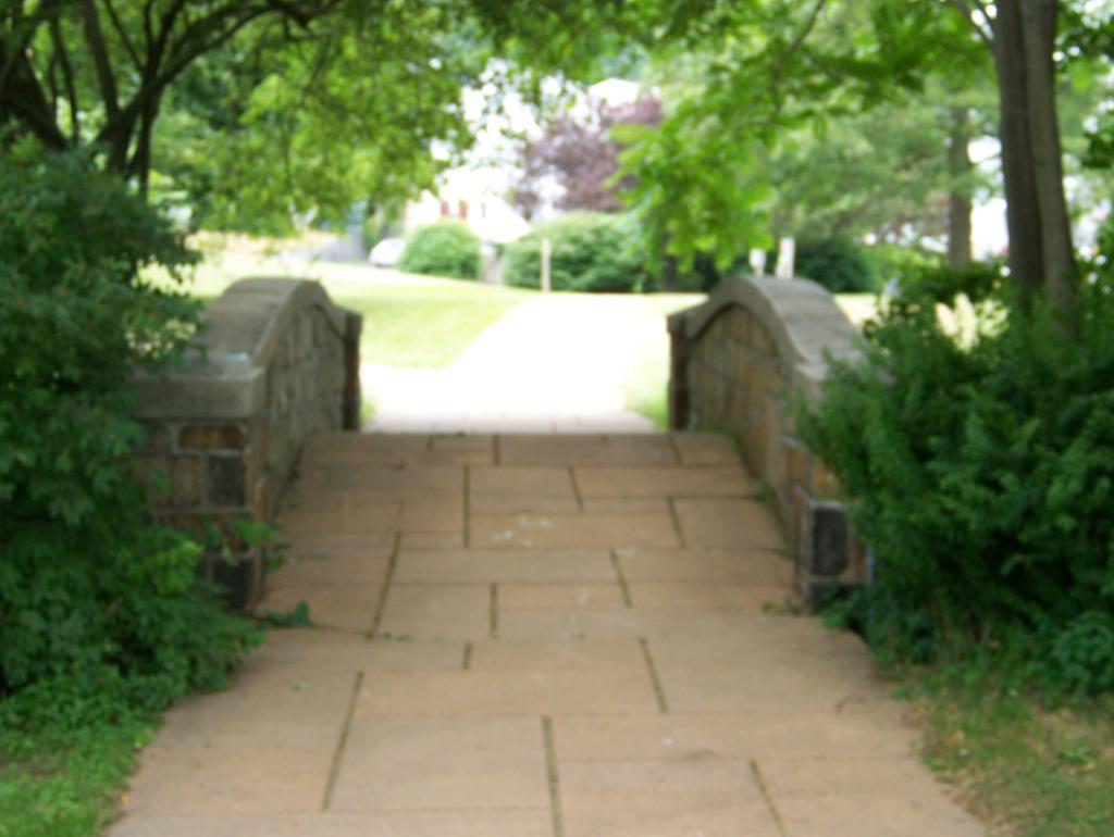 Bridge Pathway Stock