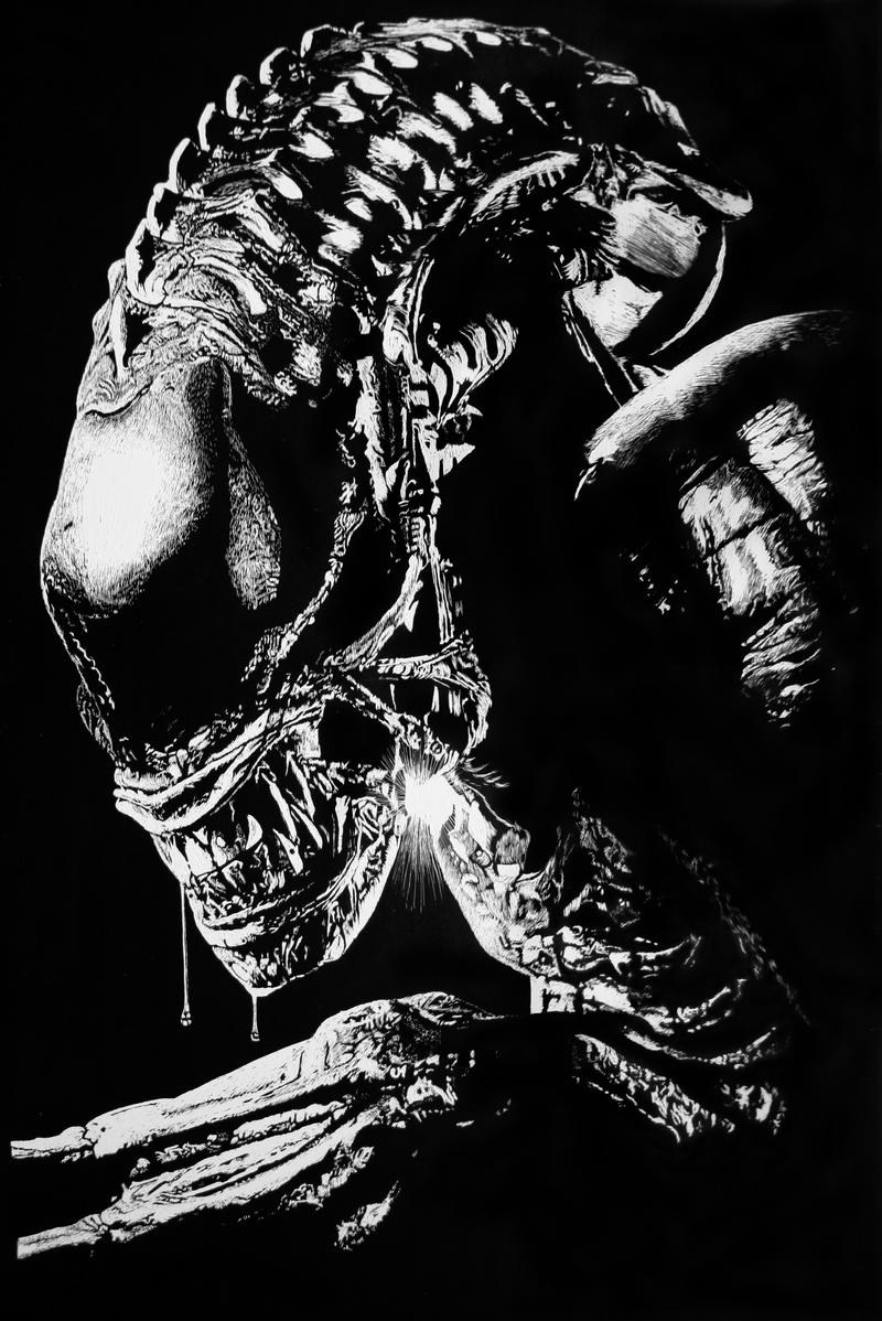 Scratchboard AVP wip 2 by RTyson