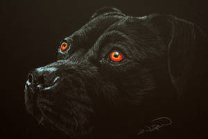 The Nightwatchman's Dog by RTyson
