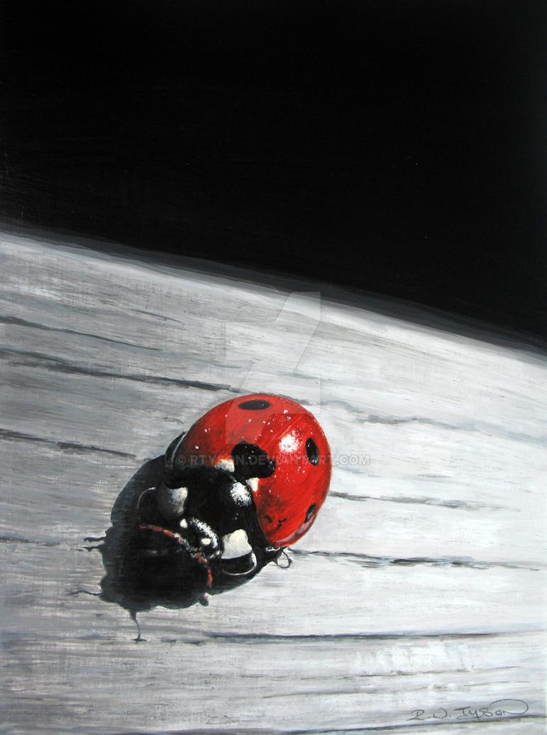 Ladybird by RTyson