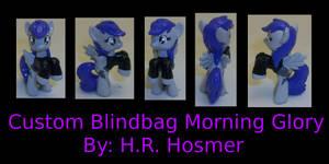 Custom Blindbag Morning Glory of Fallout Equestria