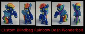 Rainbow Dash Wonderbolt