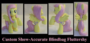 Show-Accurate Fluttershy