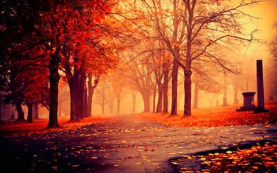 Fall-desktop-background-wallpaper by VIVIMETALIUN