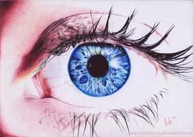 Blue eye by 22Zitty22