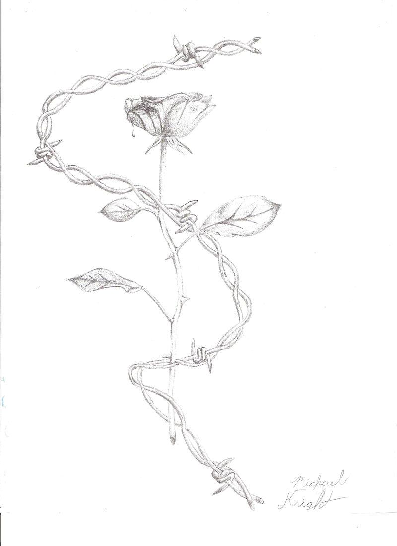 Barbed wire rose by knightrider on deviantart