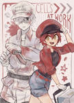 cells!! at work!!