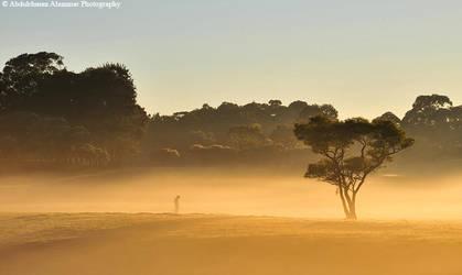 Good Morning Australia by AL-AMMAR
