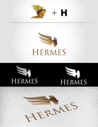 Hermes Tourism-Travel Logo by furkanzararsiz