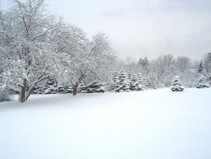 SNOW I by YM-stock