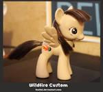 Wildfire Custom