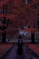 We Are But Falling Leaves by aMentalSymphony