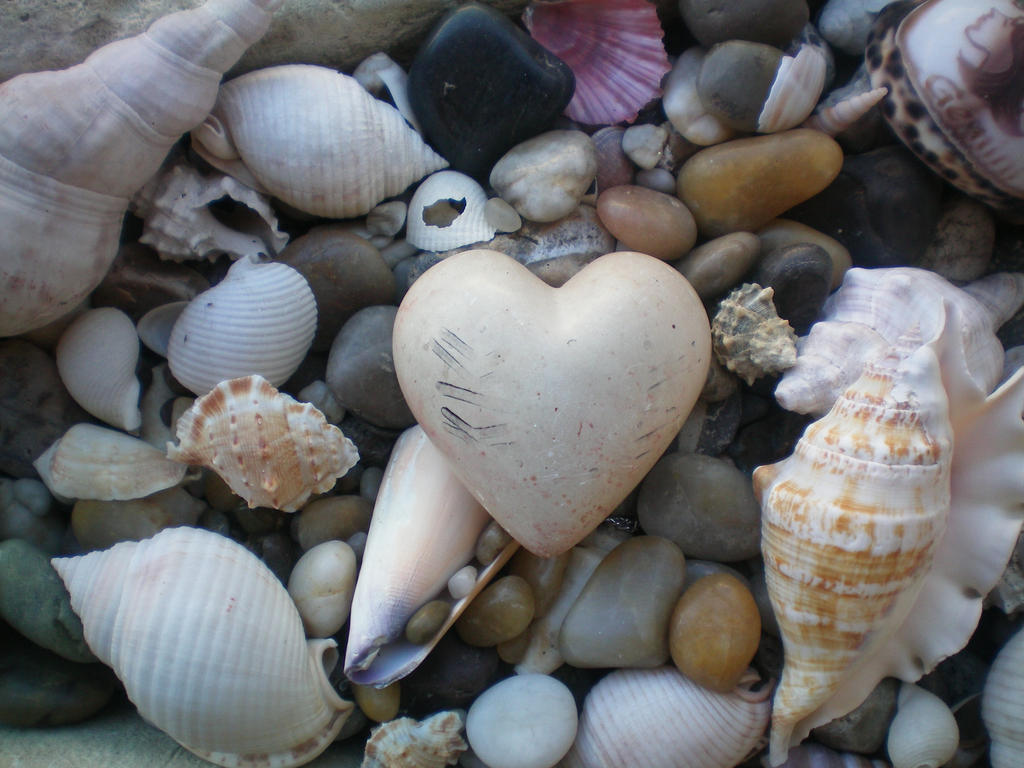 Image result for love everywhere