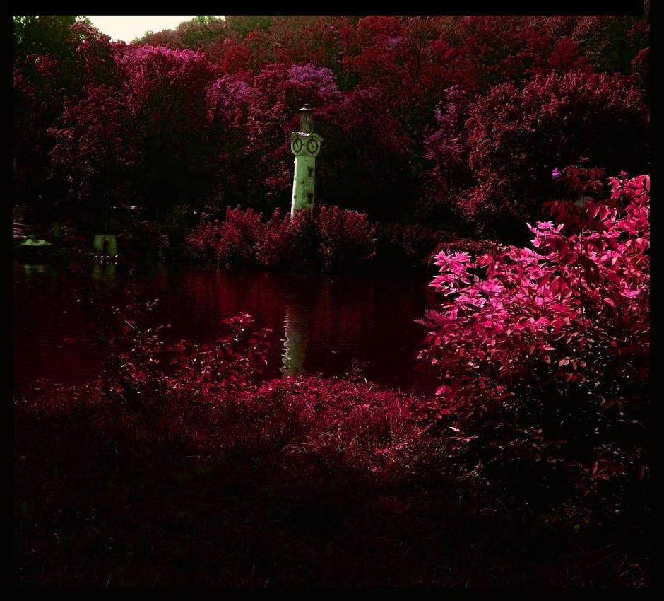 Autumn by Christiania-unica