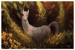 unicorn sight