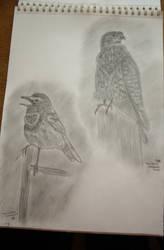 birds 2 by butterfly87