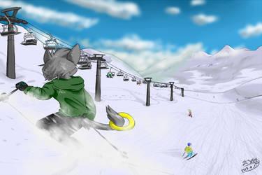 Skiing fun