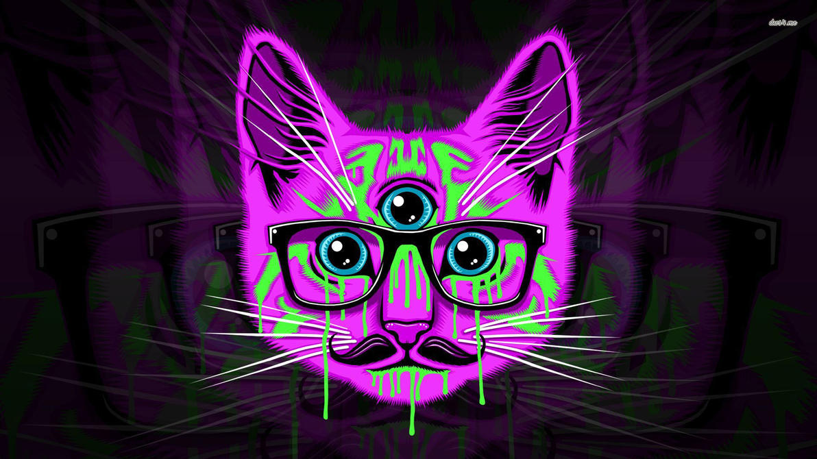 22826 psychedelic hipster cat 1920x1080 artist by kayleigh beanz on