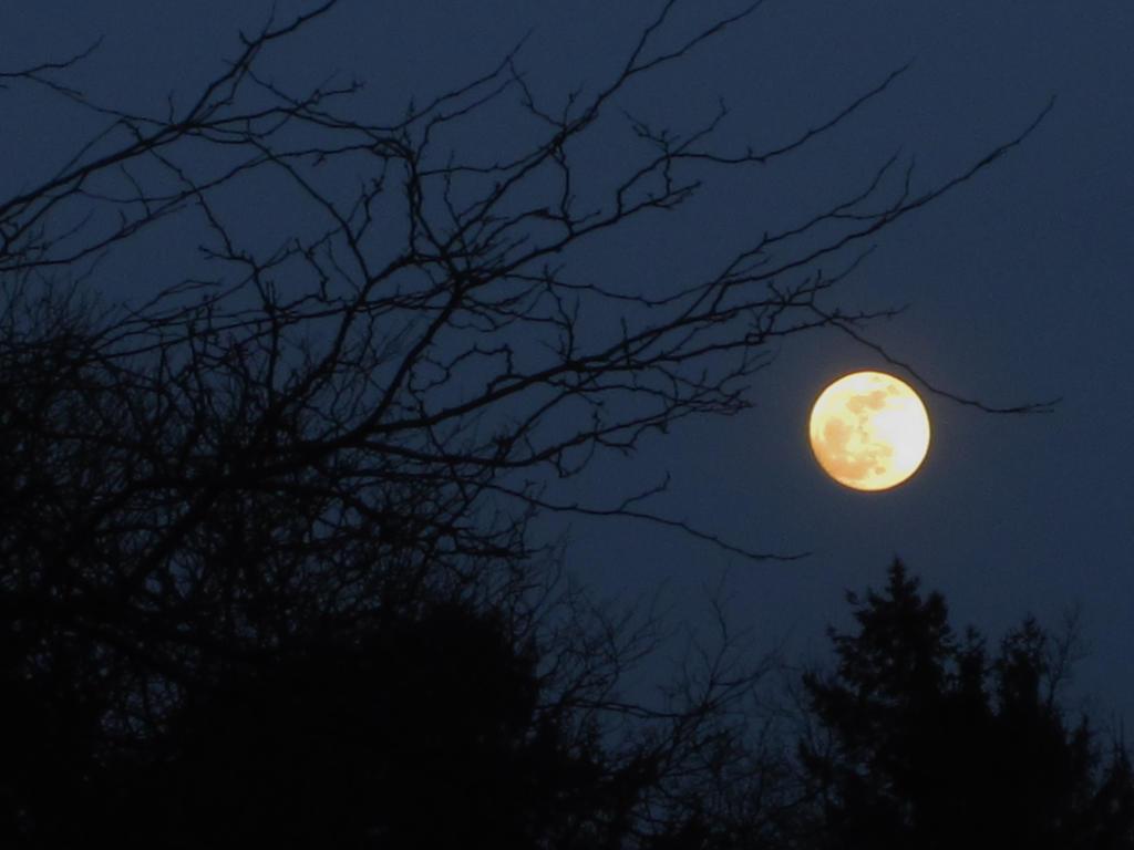 Full Moon by nightblue1991