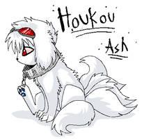 Houkou Ash by Ash-Dragon-wolf