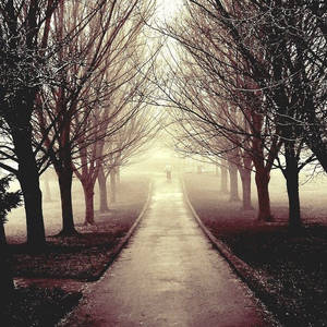 Eerie by Parallel0gram