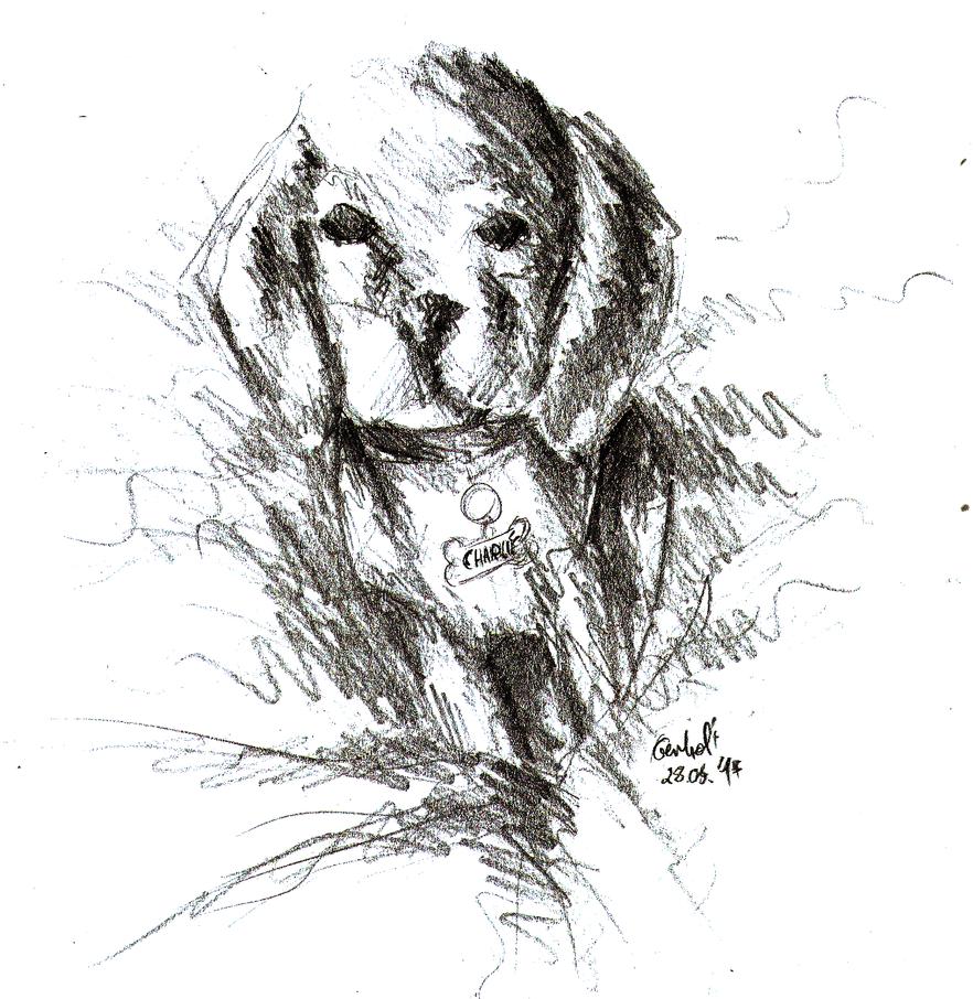 [Rysunki] by Orzech  - Page 3 Hahuahu_doge_by_theorzeszek-dbeofpr