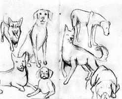 Dogs by TheOrzeszek