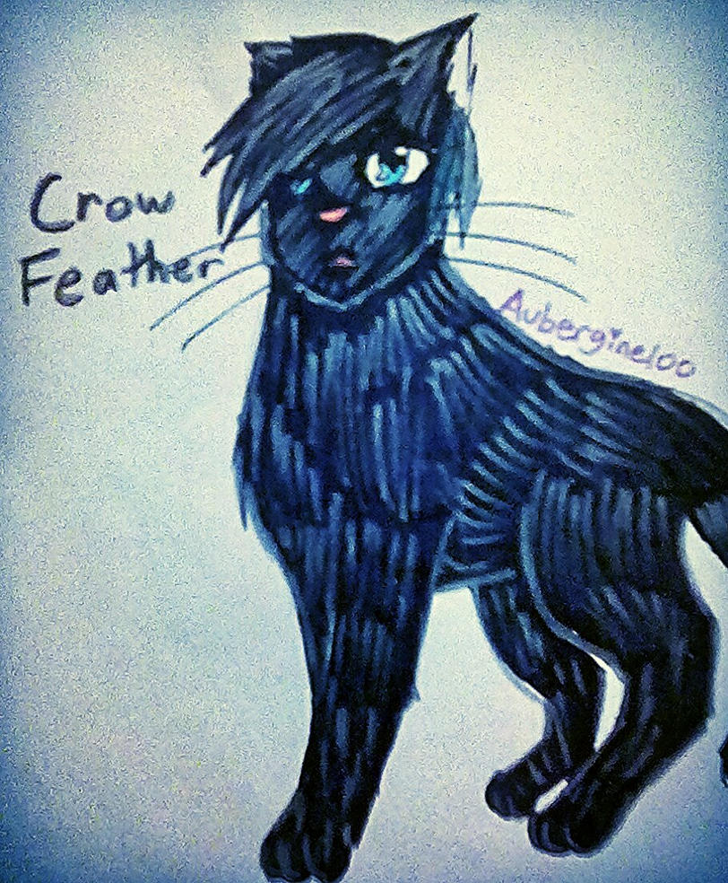 Crowfeather by Aubergine100