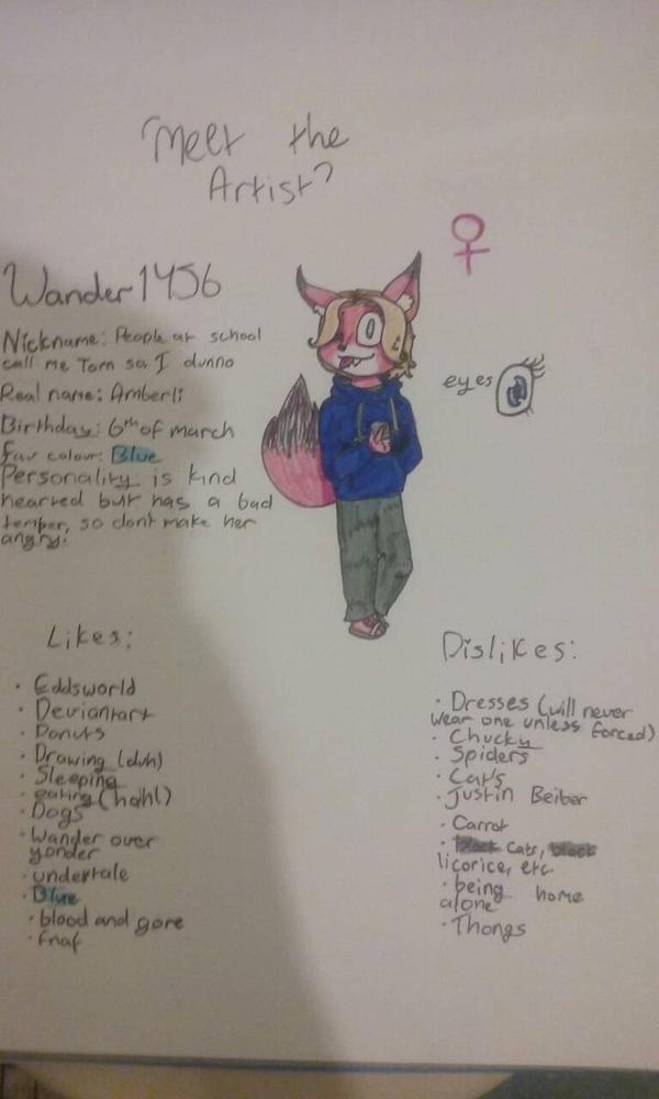 Meet The Artist/Meh by Wander1456