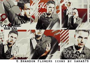 6 Brandon Flowers icons by Sara876