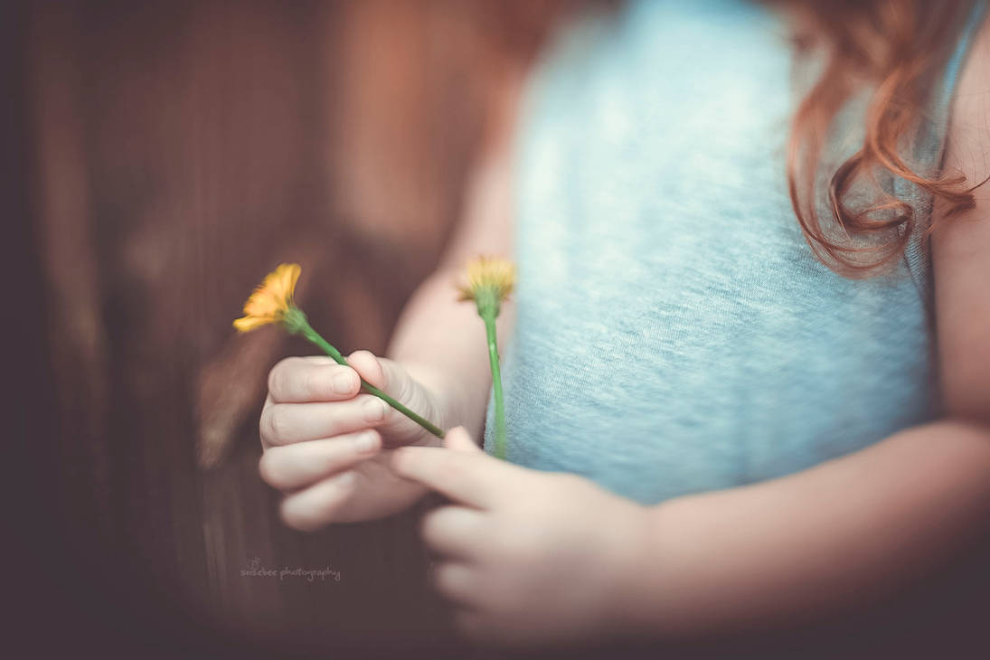 Little Flower by cheslah