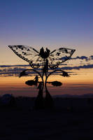 Sculpture at Sun Rise by marc17
