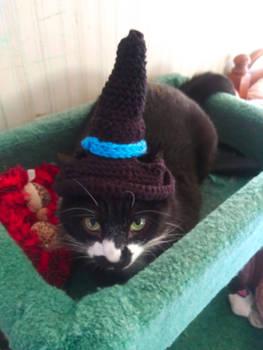 Crochet Halloween Cat Hat