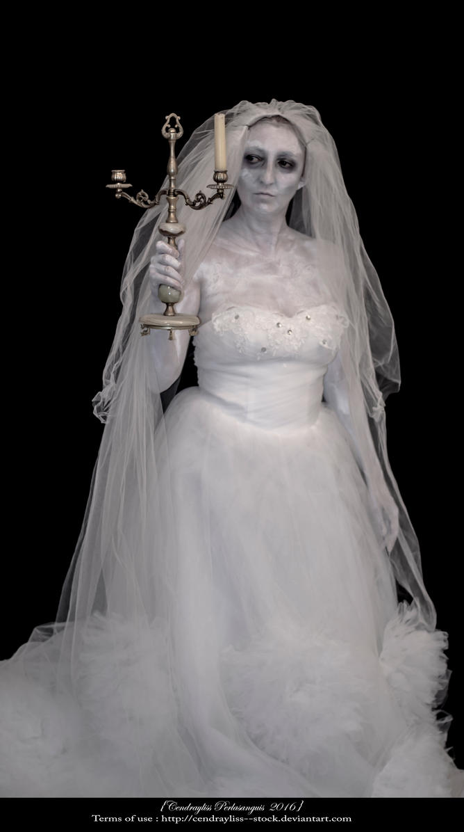 Ghost portrait _Be my Bridegroom ! _Part I by Cendrayliss--Stock