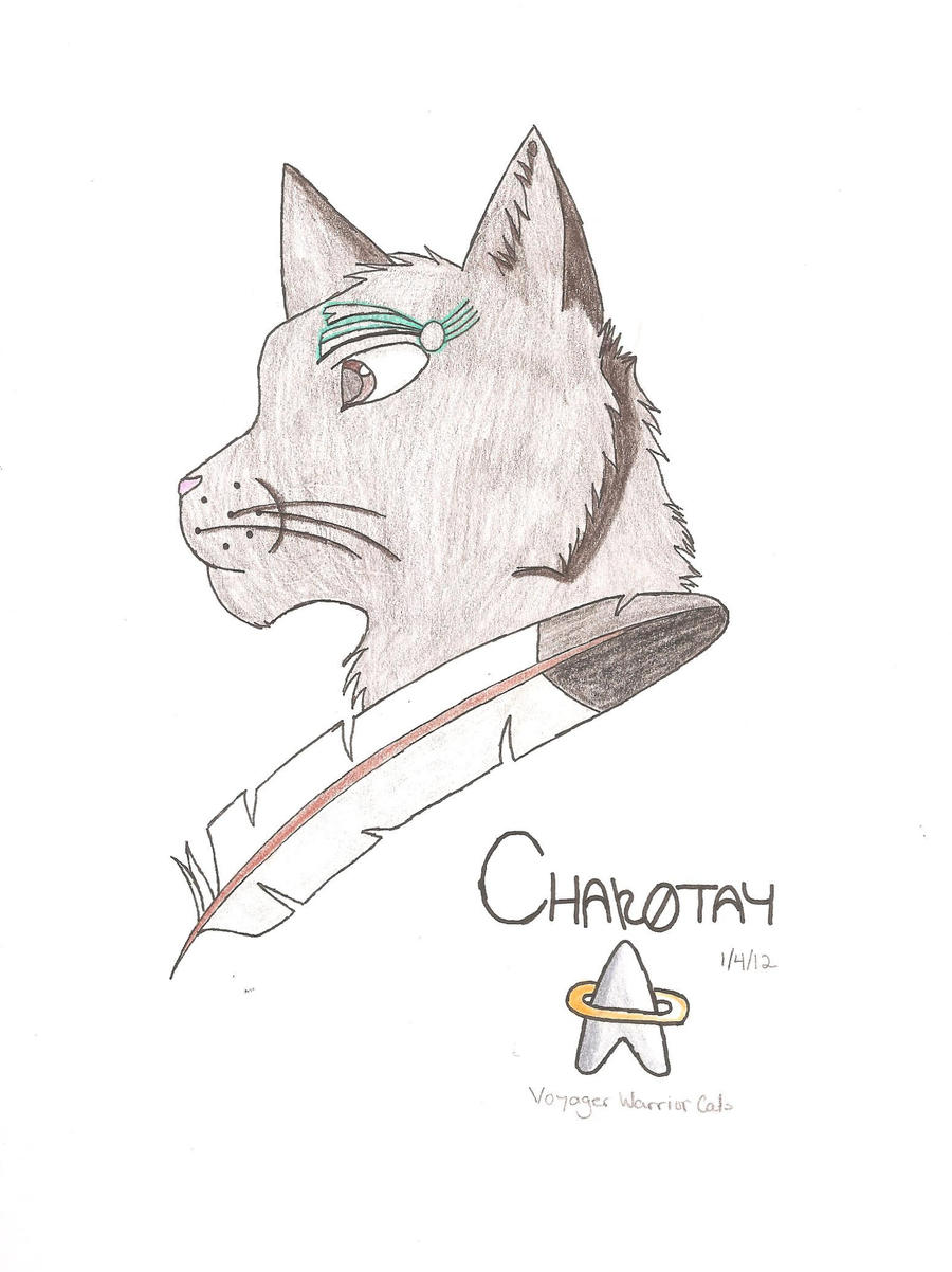 Chakotay by Dragon-of-DC
