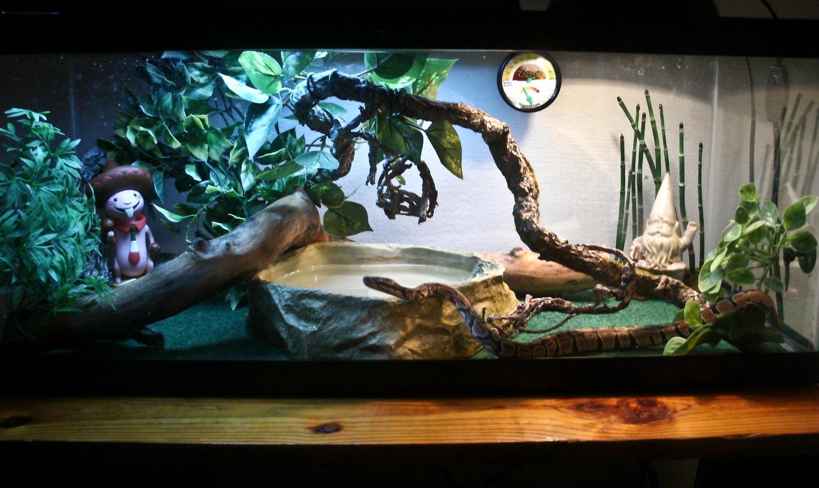 Super Crazy Snake Habitat By Lita584 On Deviantart