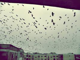 Full sky2. by Freaks2