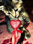 My love Kitty.