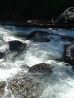 More River by venom-stock