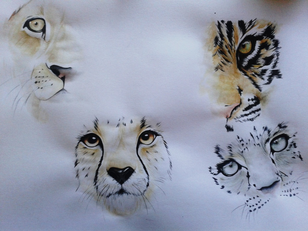 wild cats watercolor by ADeddie