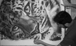 Leopardo - (Panthera pardus)