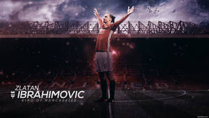 Zlatan Ibrahimovc 2016/17 Wallpaper