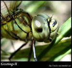 Greetings II by anubis-myr