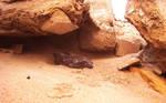 little cave in beach sand by syedmaaz