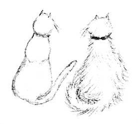 Kitty sketch