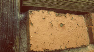 Old Brick Wall by Zorodora